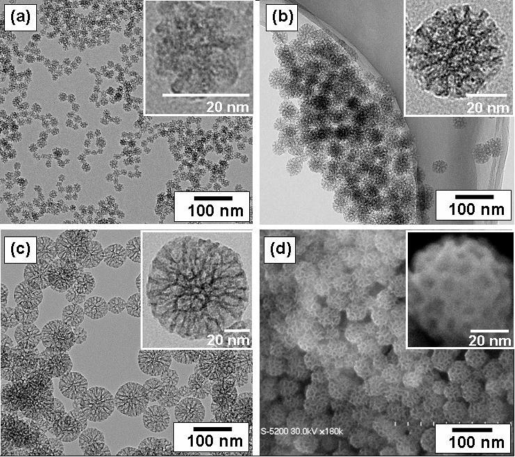 2013-06-06-Mesoporous_Silica_Nanoparticle.jpg