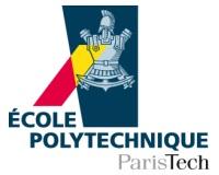 2013-06-07-logoEcolePolytechnique12.jpg