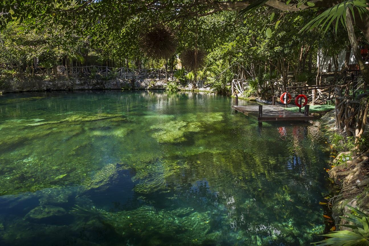 2013-06-14-cenote.jpg