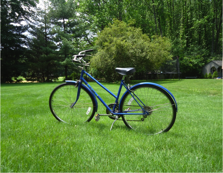 2013-06-15-ContentImage11738234706justbike.png