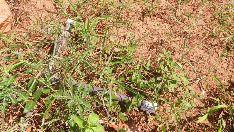 Abandoned USAID irrigation equipment at Mlandizi Tanzania