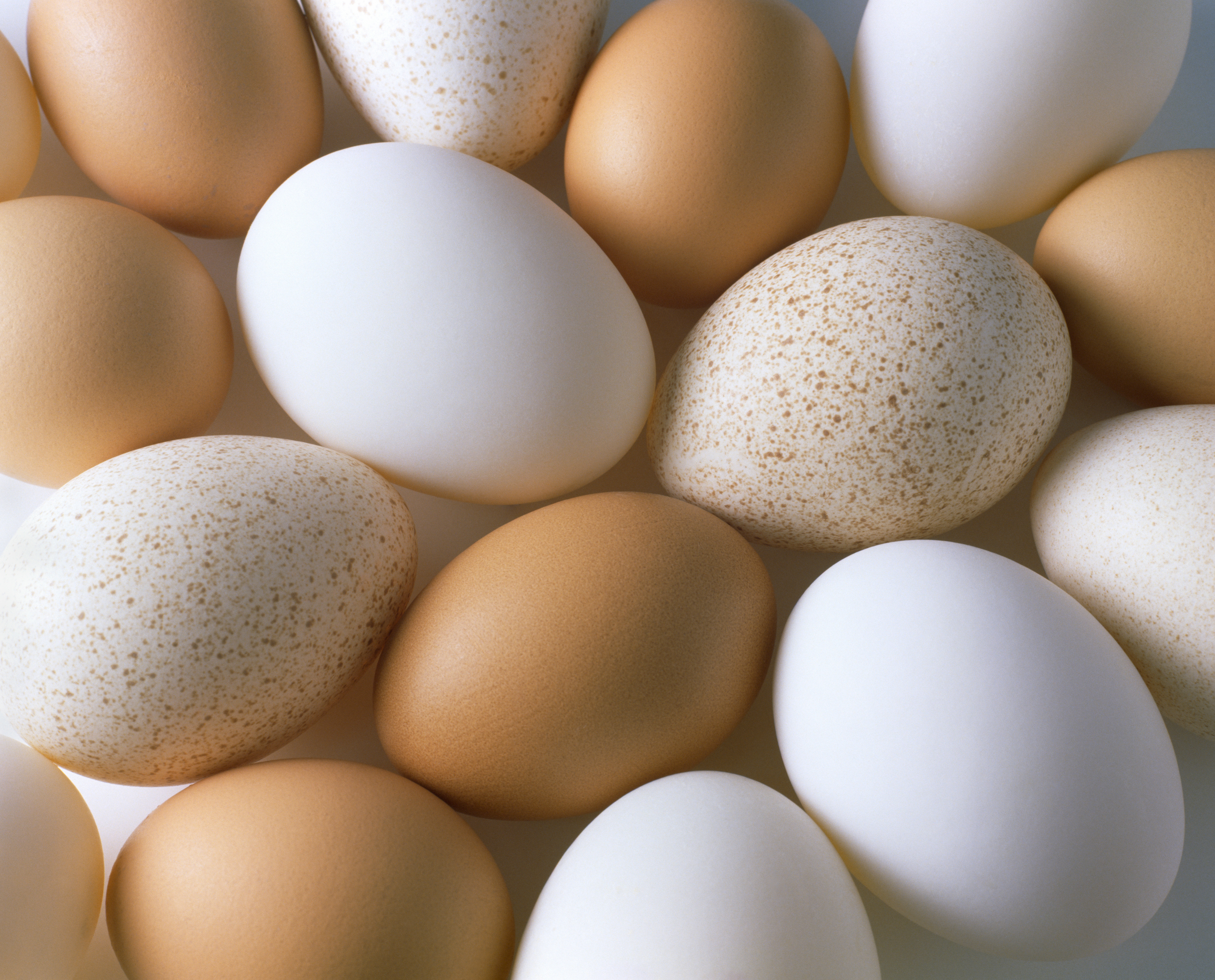 Heres why your brown eggs have more blood spots than