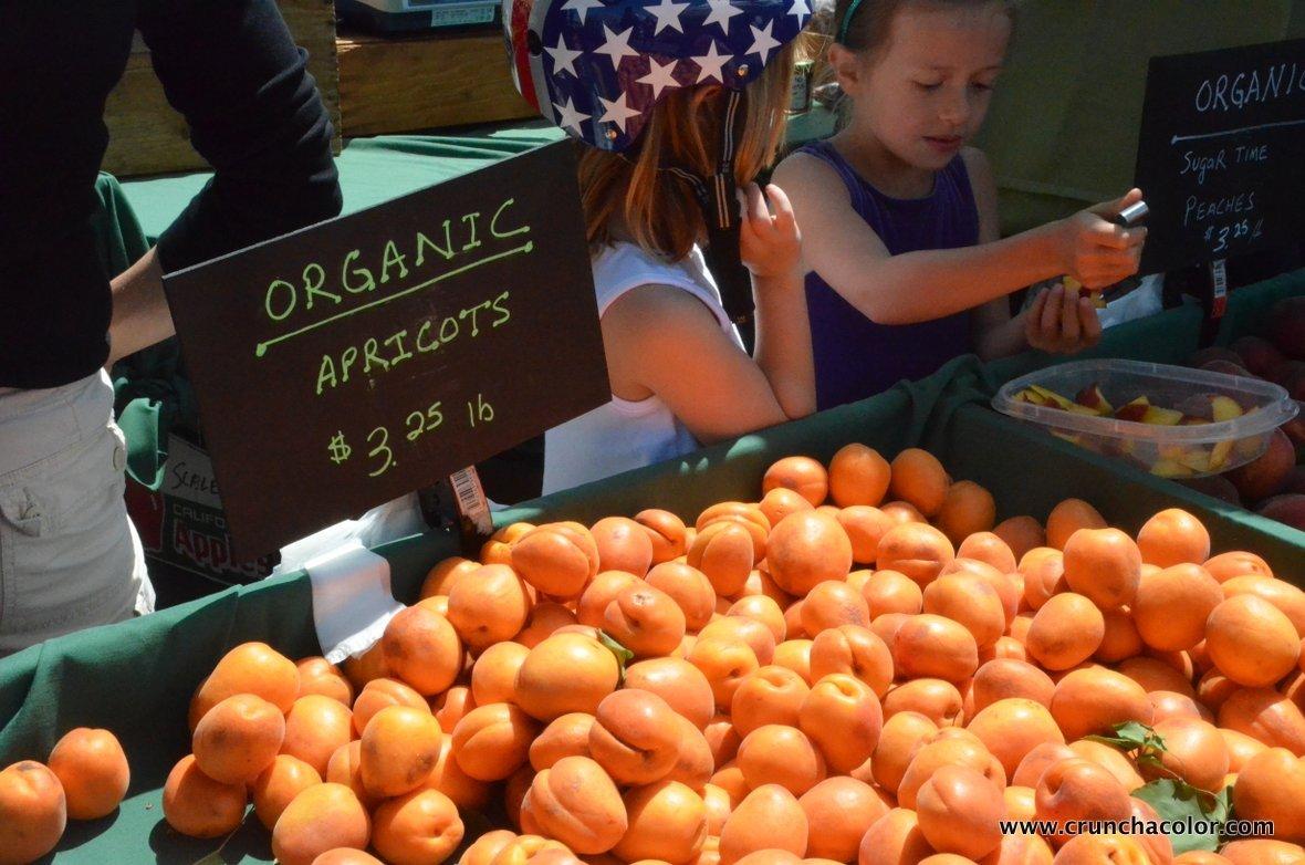 2013-06-19-healthyeatingforkidsfarmersmarketscrunchacolor.JPG