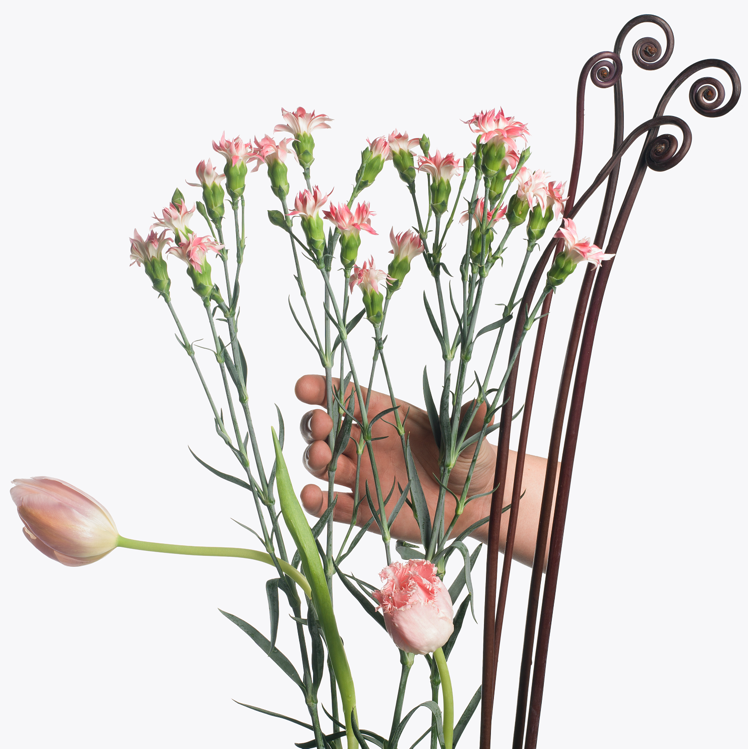 2013-06-21-flower.png