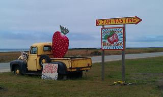 2013-06-27-berryfarm.jpg