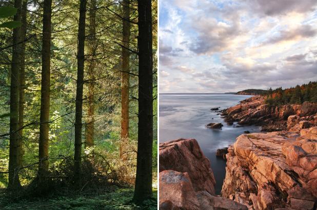 2013-06-28-Blackwoods_Acadia_Shutterstock_ss.png