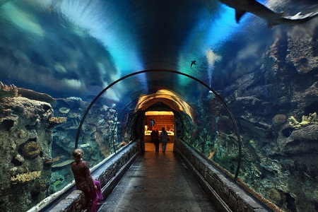 Places You Never Thought To Take Your Kids Huffpost