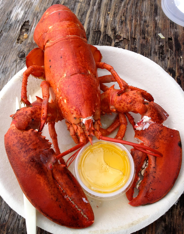 2013-07-03-Lobster.jpg