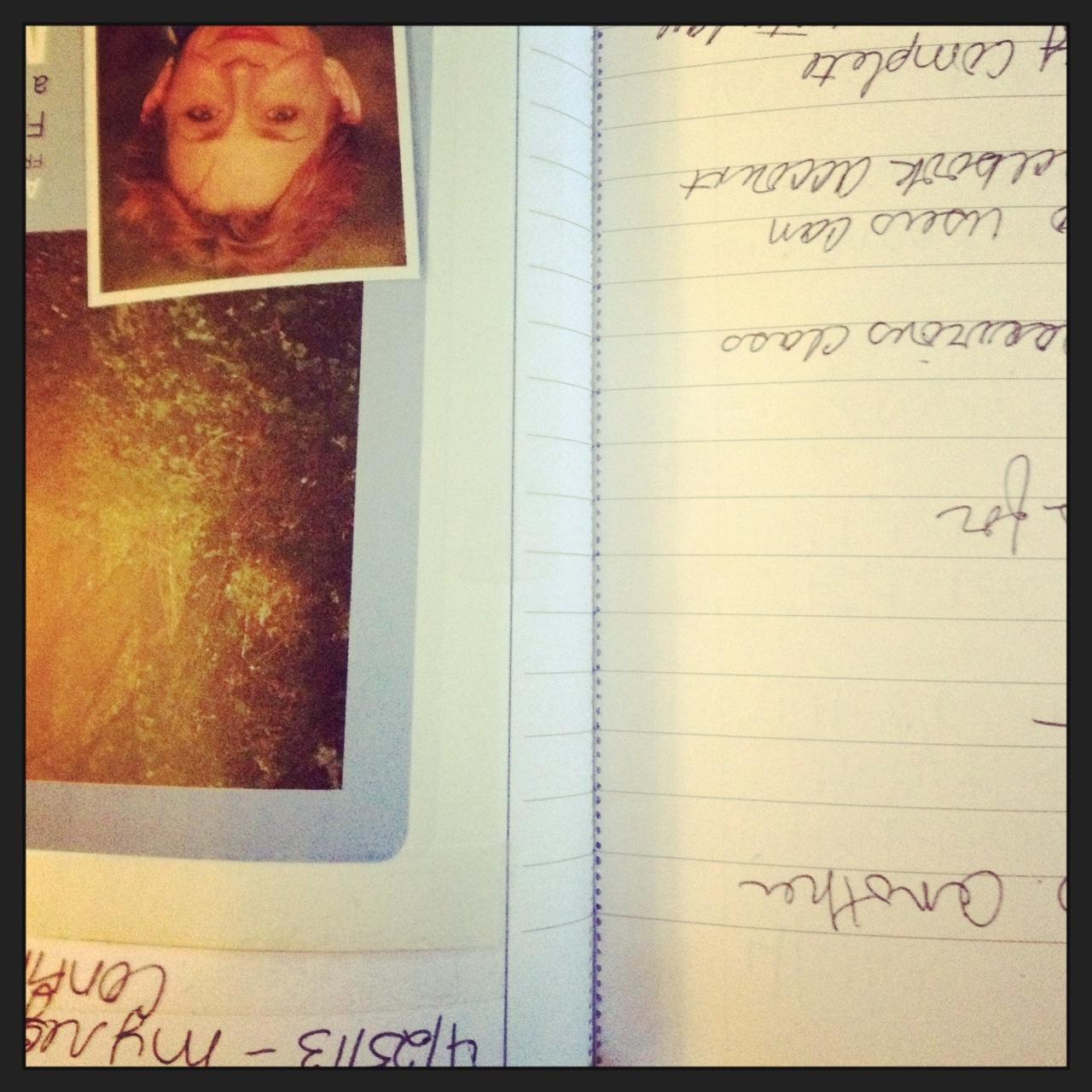 2013-07-14-Journal.JPG
