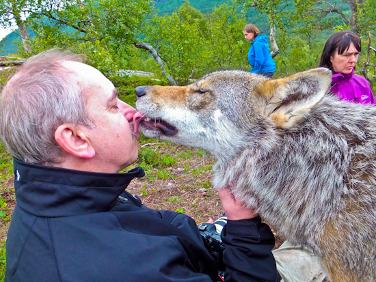 2013-07-16-Wolfkissman.jpg