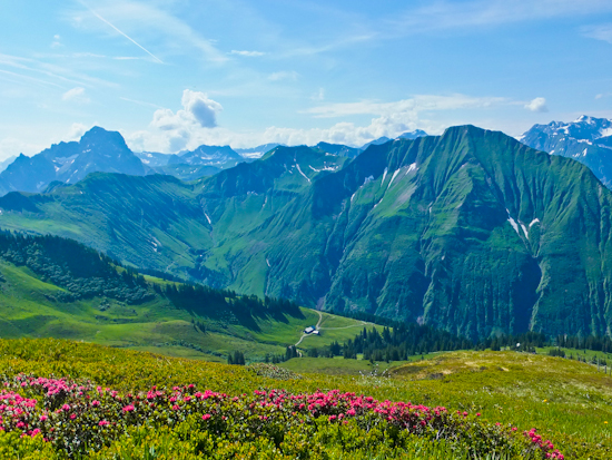 2013-07-26-BregenzerwaldMountainsandRedFlowers.jpg