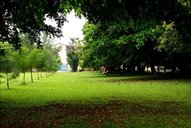 2013-07-29-LagosEden.jpg