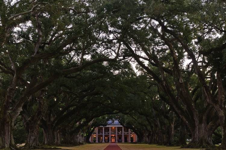 2013-07-29-OakAlleyPlantation.jpg