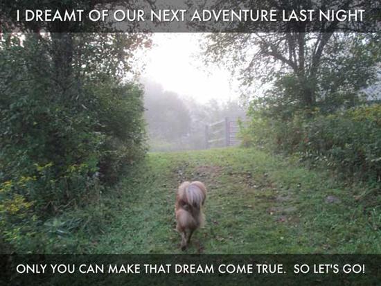 2013-07-29-adventure.jpg