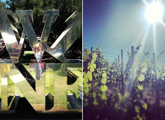 2013-07-30-winecrop.jpg
