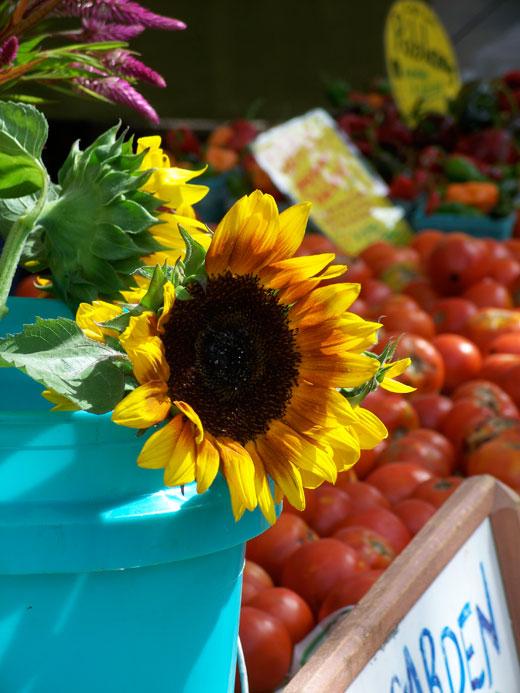 2013-08-01-CROPPED_farmersmarkets.jpg
