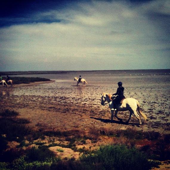 2013-08-06-caballos.JPG