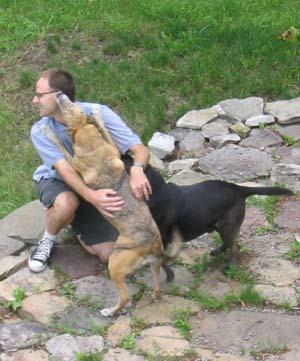 2013-08-12-dogs.jpg
