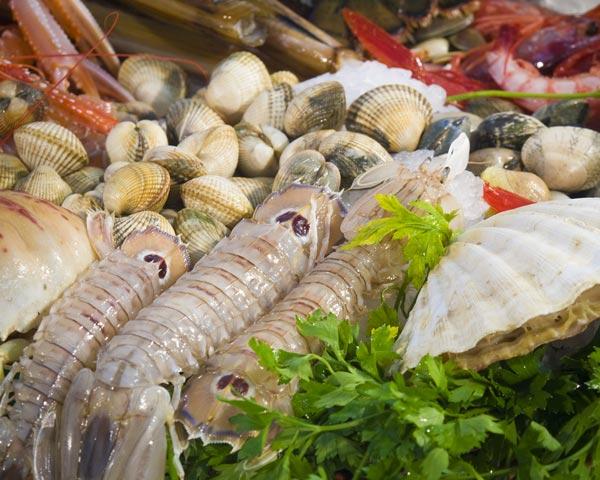 2013-08-21-shellfishMAINHP.jpg