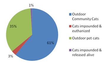 California cat population