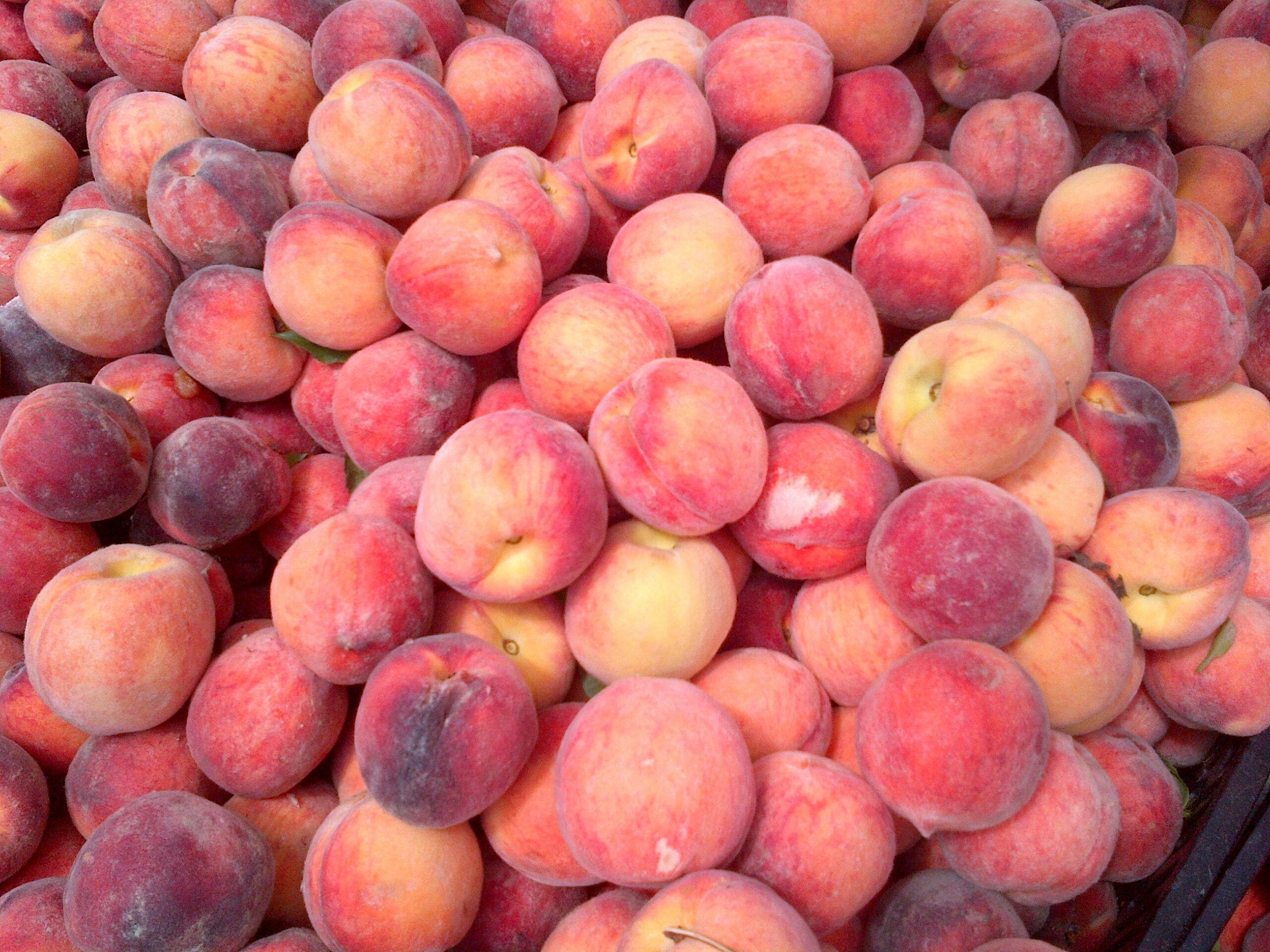 2013-08-28-Peaches.JPG