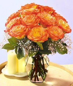 2013-08-28-long_stem_romance_roses_2112257x300.jpg