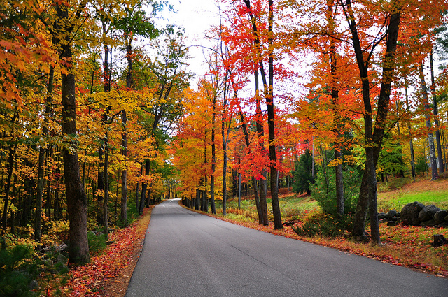 Where To See New England's Best Fall Foliage