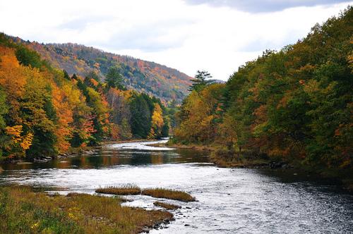 2013-08-30-Vermontfallfoliage.jpg