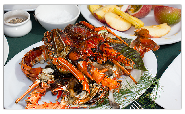 2013-09-03-lobster.png