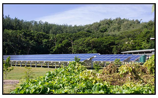 2013-09-03-solargarden.png