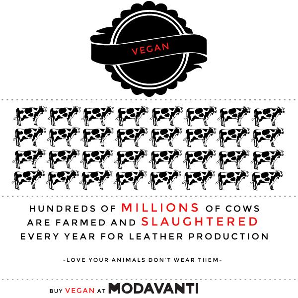 2013-09-04-veganinfo.jpg