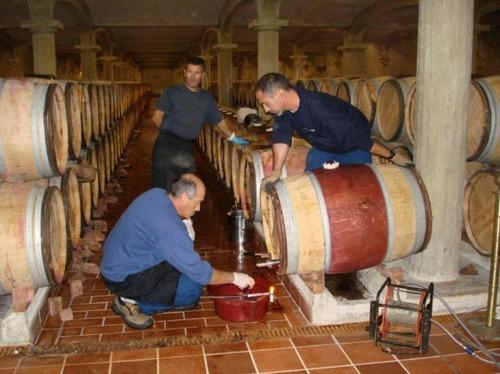 2013-09-05-Bordeauxwine.jpg