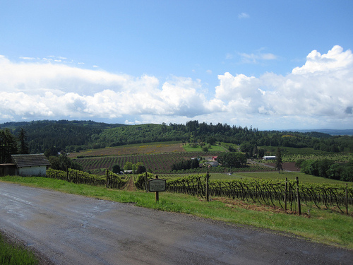 2013-09-05-WillametteValley.jpg