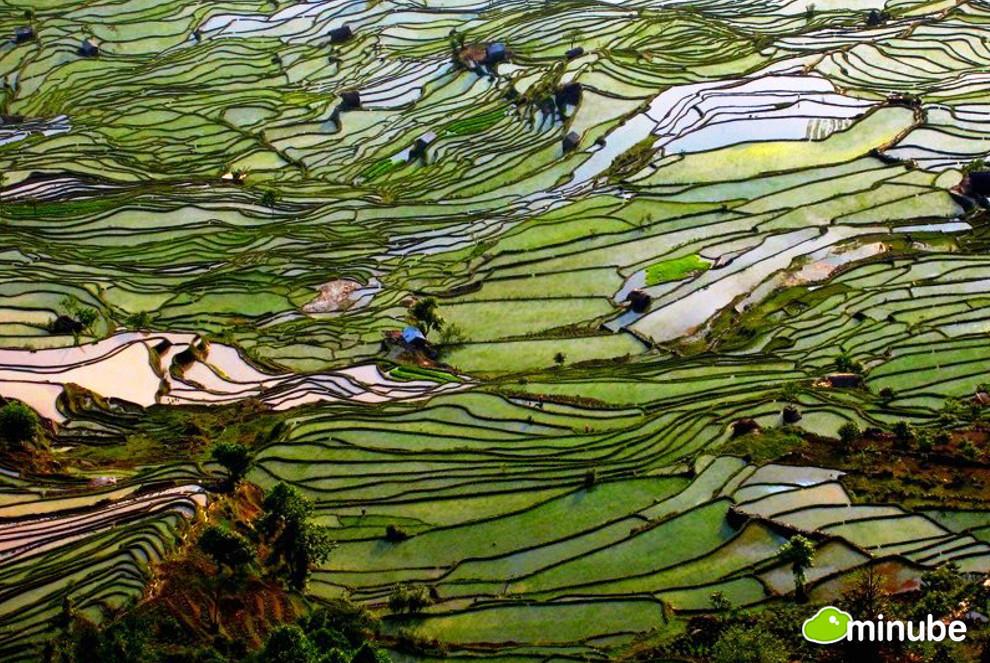 2013-09-05-YanyuangChinaBasso.jpg