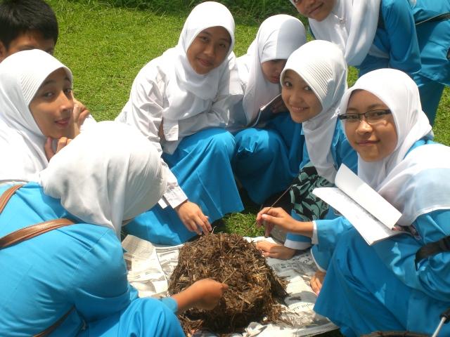 2013-09-08-indonesiacompost.jpg