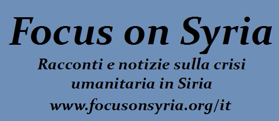 2013-09-11-LogoFocusonSyriaIt.jpg