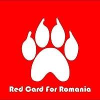 2013-09-11-RedcardforRomania2.jpg