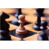 2013-09-11-chesspiece.JPG