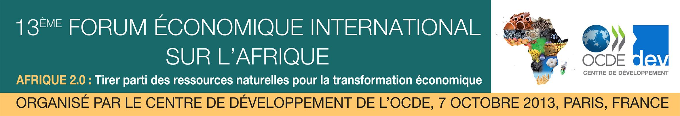 2013-10-02-BannerForumAfrica2013FRV1.JPG