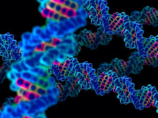 2013-10-02-genome.jpg