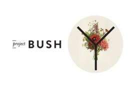 2013-10-05-ProjectBushB0.png
