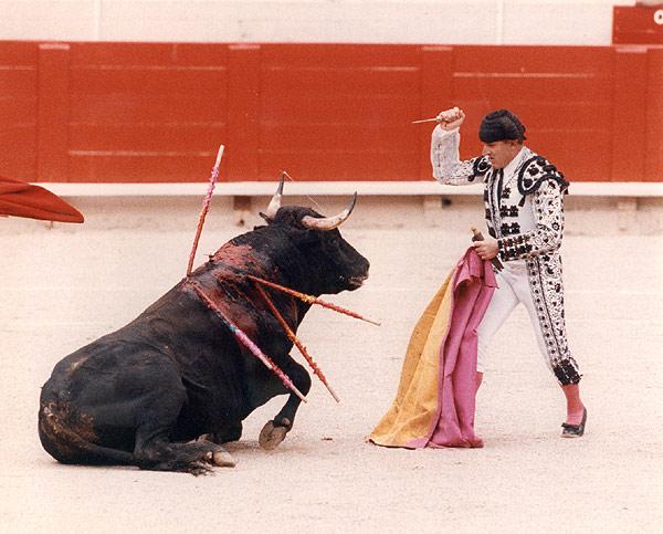 2013-10-06-main_matador1.jpg