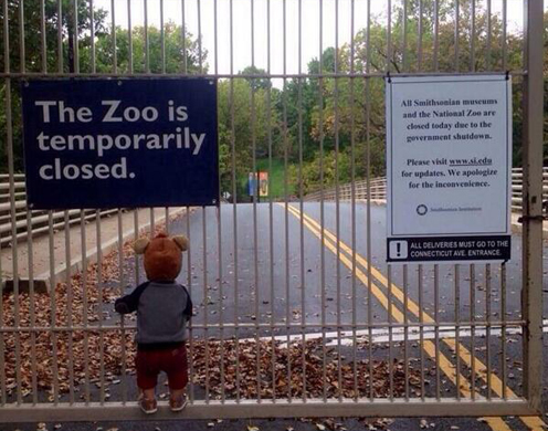 2013-10-16-zooisclosed.jpg