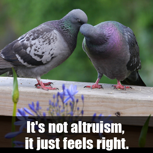 2013-10-17-altruism2meme.jpg