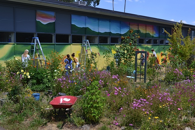 Fifty Shades of Sunflowers: Teen Garden Club Says No Way to Grey Walls