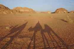 2013-10-22-Camels.jpg
