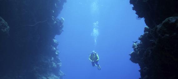 2013-10-24-diver_horiz.jpg