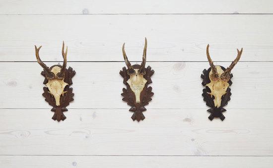 2013-10-28-antlers2.jpg
