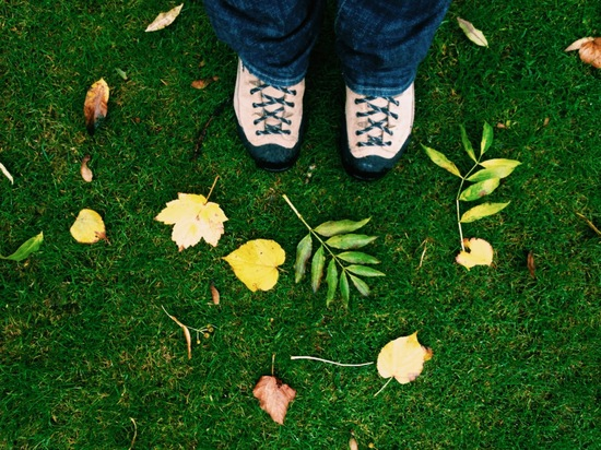 2013-10-28-fallcolor5.JPG
