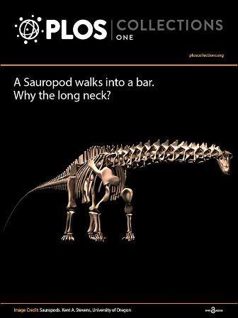 2013-10-29-SauropodEbook1.jpg